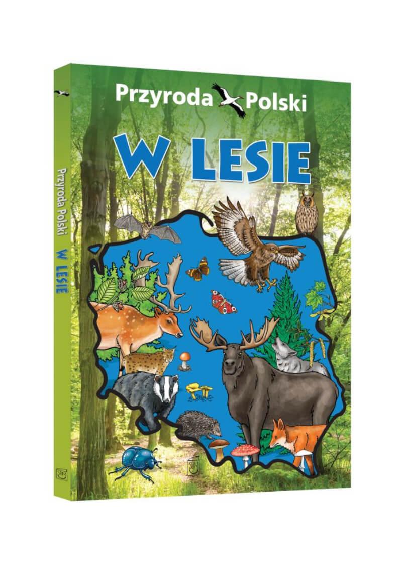 Przyroda Polski. W lesie