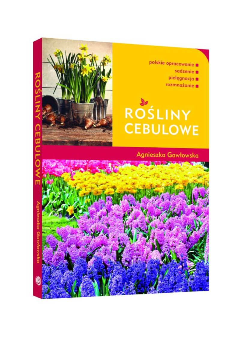Rośliny cebulowe
